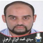 سيدي محمد الوزاني الرهوني